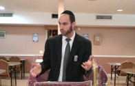 Onaas Devarim – Important Halachos and Good Stories