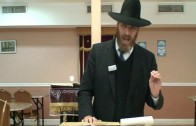 The Tikkun of Shovavim