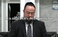 Is That All There Is To Mitzvos?